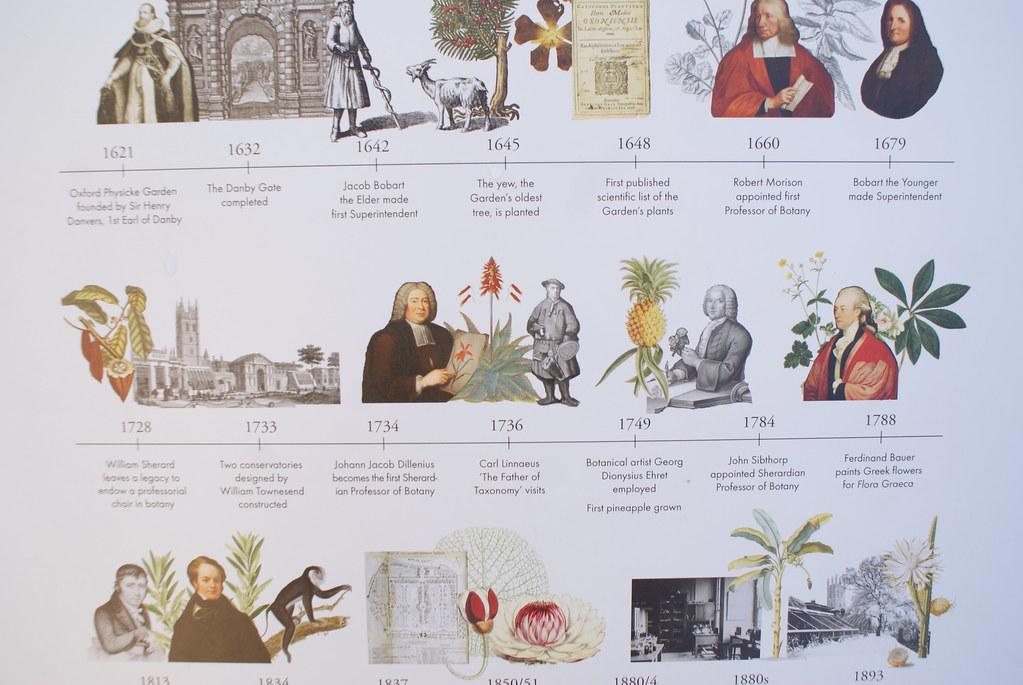 Chronologie du plus ancien jardin botanique en Grande Bretagne.
