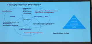 Graphic which relates different parts of the information profession