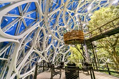Inside the Spheres @ Amazon