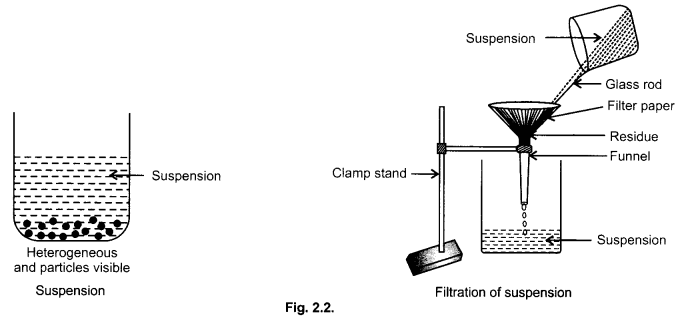cbse-class-9-science-practical-skills-solution-colloids-suspension-3