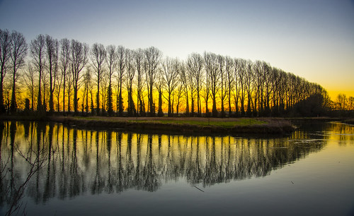 sunrise scene scenic scenery lechlade gloucestershire oxfordshire wiltshire buscot thames river flickr ngc nikon d600 winter 2018 golden tree trees footpath riverthames swindon local relection reflections sihouette uk british february