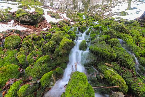 Parque Natural de Gorbeia #DePaseoConLarri #Flickr -65