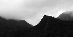 niebla-oyacachi