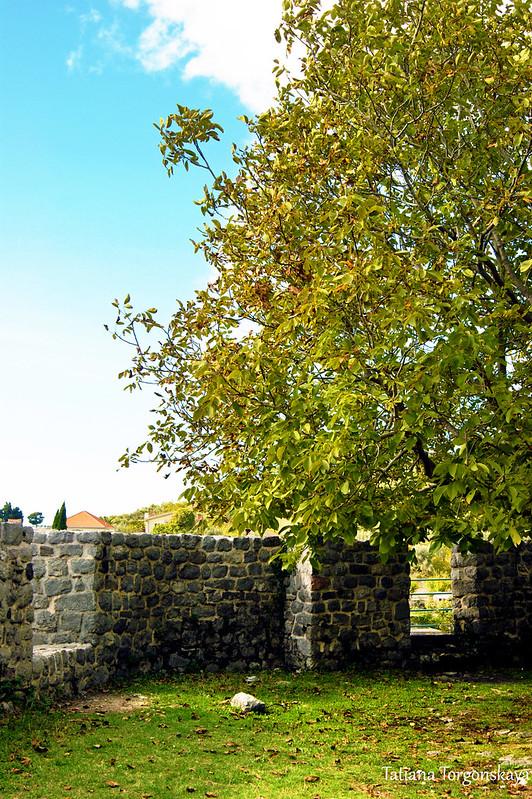 Пейзаж с крепостной стеной и грецким орехом