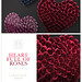 SAYO - Heart Full of Roses @ Kustom9