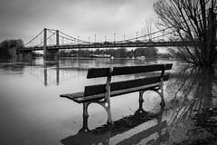 The River Seine floods near Paris