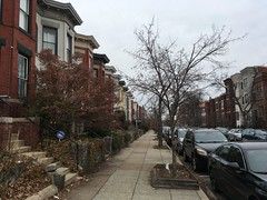Rowhouses with planter beds