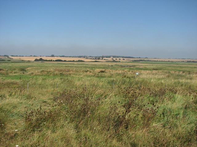 Marshland near Holland-on-Sea