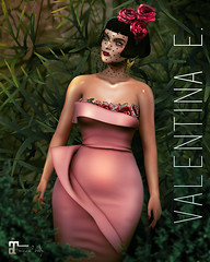 NEW!  Valentina E. La Petite Rose Dress @ Whimsical!