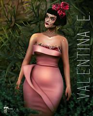 NEW!  Valentina E. La Petite Rose Dress @ Whimsical!