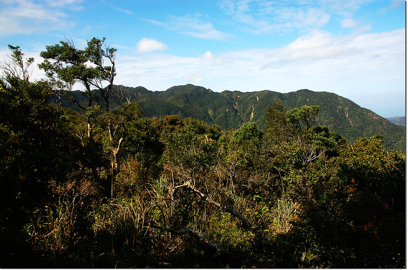 牡丹路山榕樹群聚區展望點西眺里龍山稜線