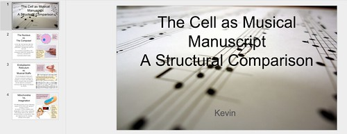 Cell Music Analogy Project