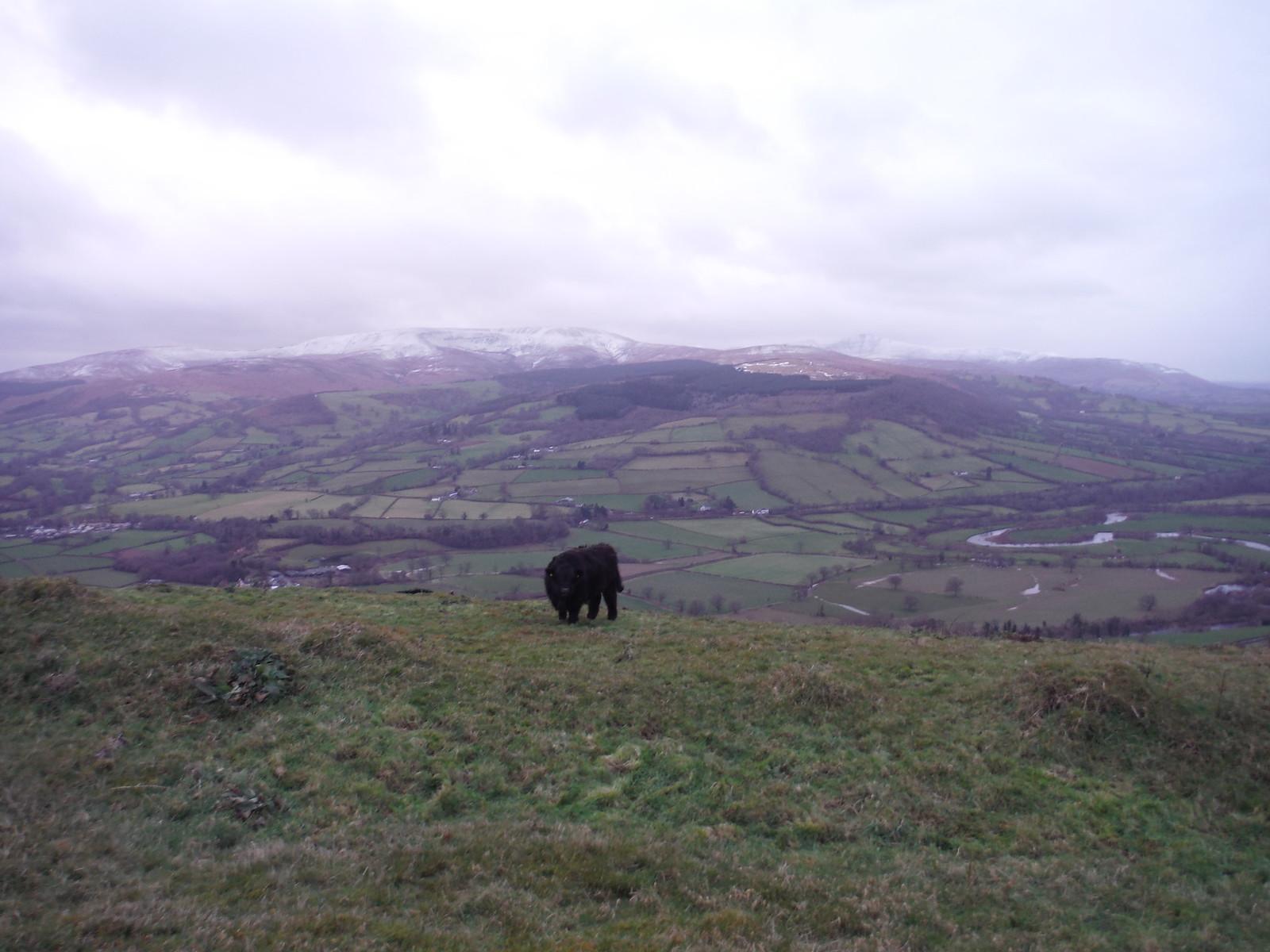 Usk Valley and Waun Rydd from Allt yr Esgair SWC Walk 308 - Bwlch Circular (via Mynydd Troed and Llangorse Lake)