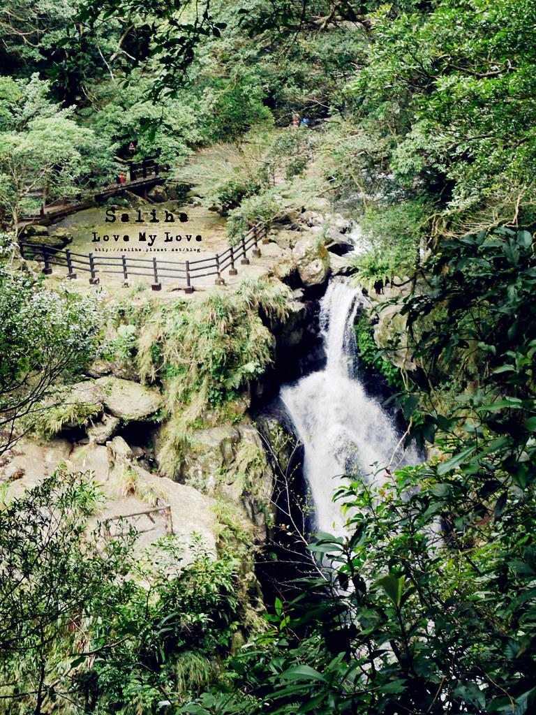 新北三峽一日遊踏青景點推薦滿月圓森林遊樂區 (43)