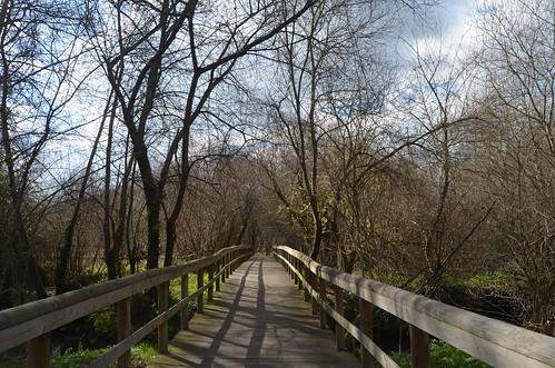 Parque das Ribeiras do rio Uíma