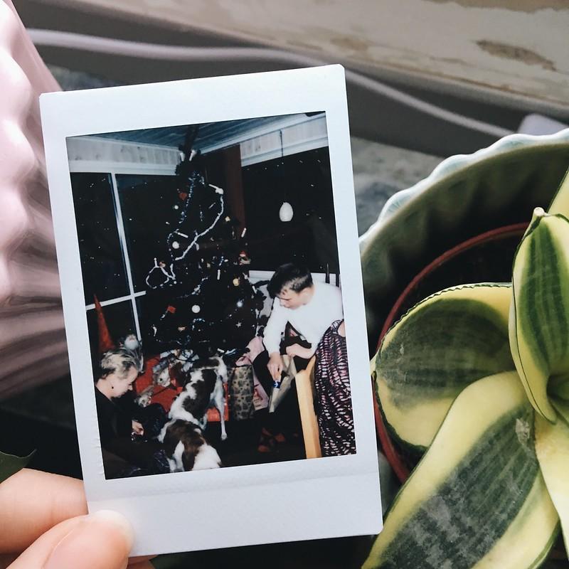 polaroids august-december 2017