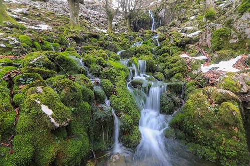 Parque Natural de Gorbeia #DePaseoConLarri #Flickr -69