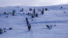 Podejście do punktu kontrolnego na Pylec (Kotły Dżebronia), wysokość  1560m. Zawody, dzień 2.