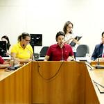 ter, 20/02/2018 - 12:33 - 2ª Reunião Ordinária da Comissão de Legislação e Justiça.Foto: Rafa Aguiar