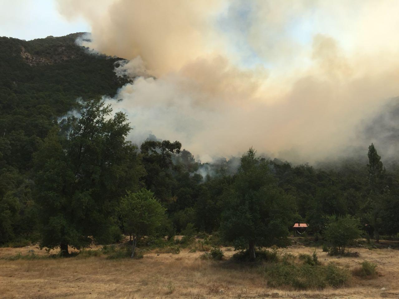 LINARES; CONAF entrega Balance de los Actuales Incendios Forestales en la Provincia