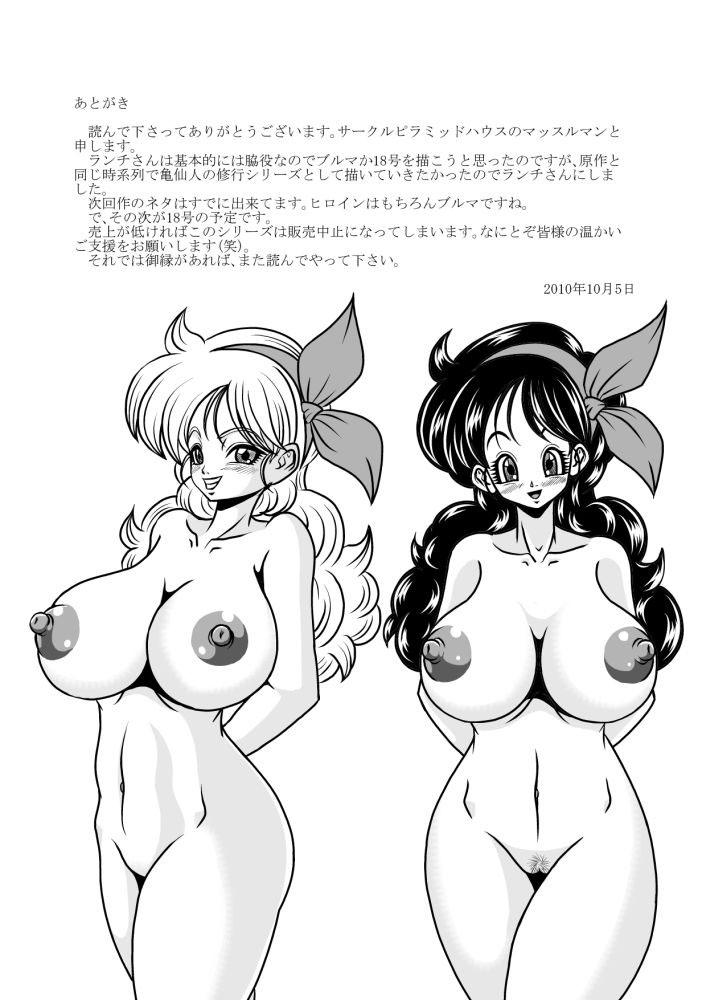 Hình ảnh  trong bài viết Master Roshi's Training