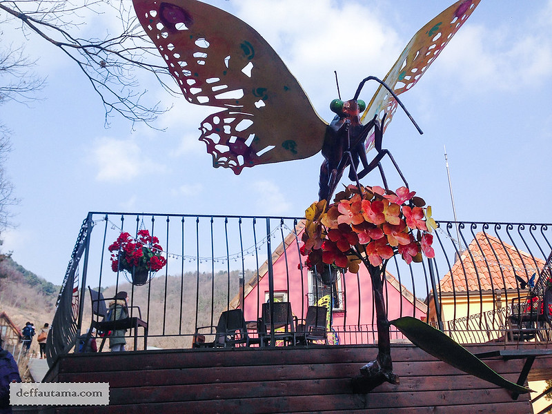 Petite France - Butterfly Park 1