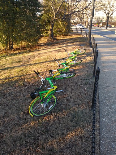 How not to park your LimeBike