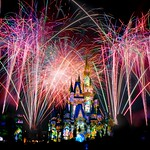 Reach out and find your Happily Ever After!