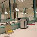 Beslenme İlkeleri Uygulamaları Laboratuvarı 6