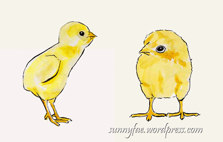 little chick sketches 2
