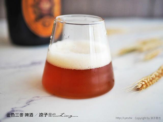 金色三麥 啤酒 11