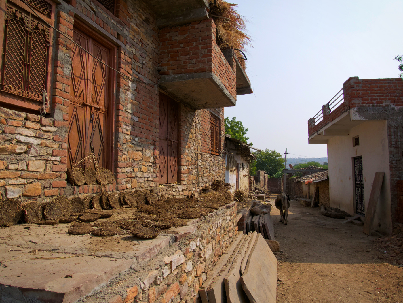 739-India-Bijaipur
