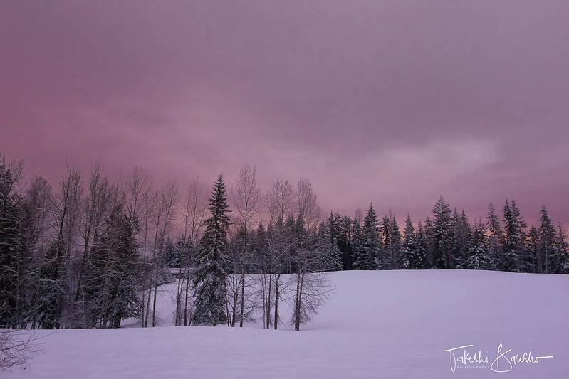 pinkish evening sky