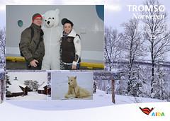 AIDAcara, Nordland 2017 - 7.Tag, Tromsø