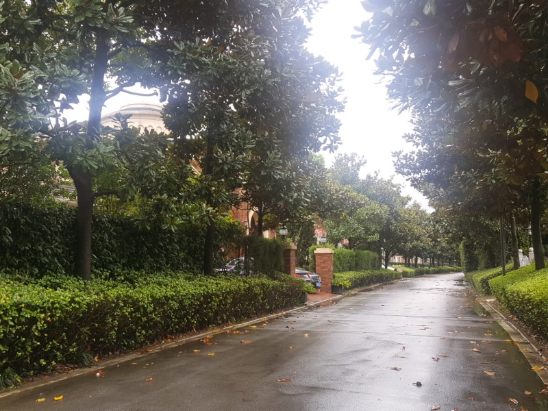 Shanghai suburbs