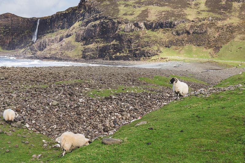Talisker Bay - Skye - Scotland 2017