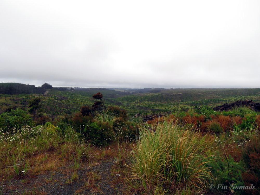 Northland views
