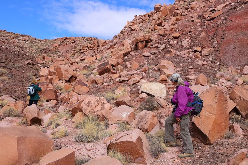 IMG_7983 Guided Off the Beaten Path Hike: Petroglyph Mesa