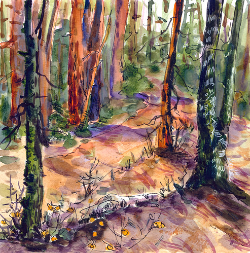 Sketchbook #111: Forest