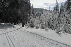 SkiTour míří za sněhem do Jeseníků, JeLyMan hlásí ideální sněhové podmínky