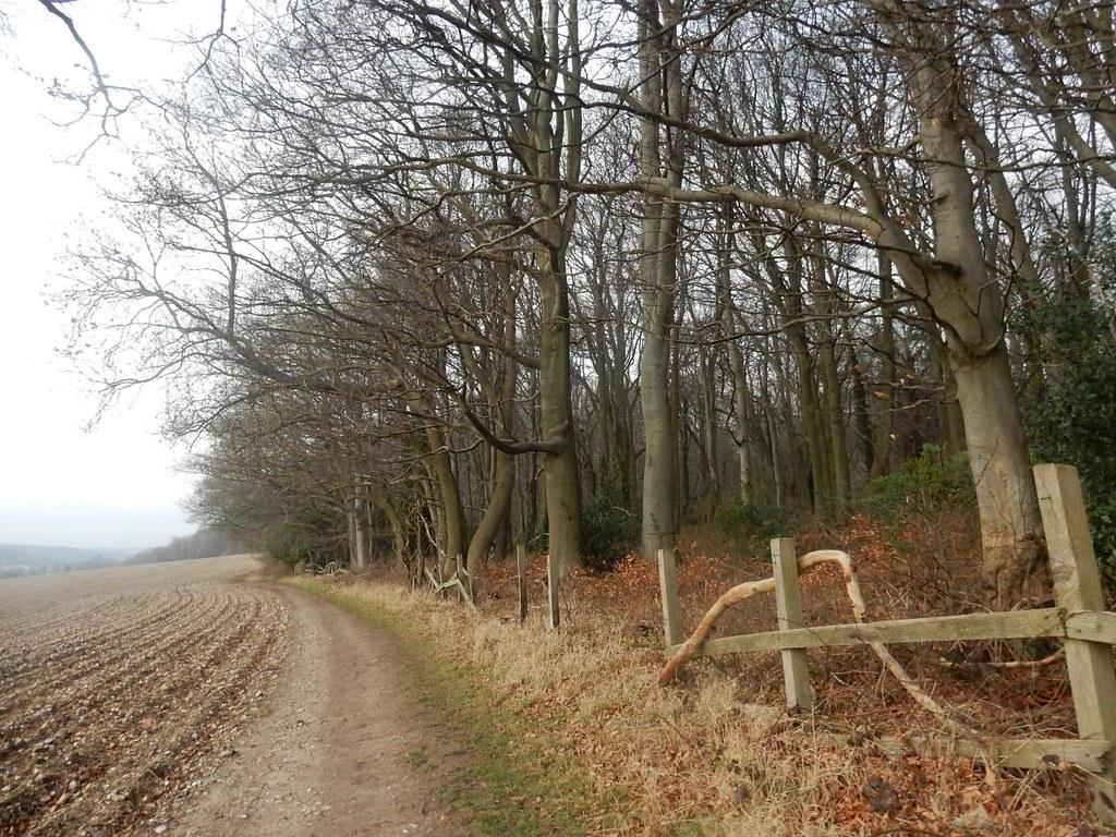 Ramshackle fence near Latimer House Chorleywood to Chesham