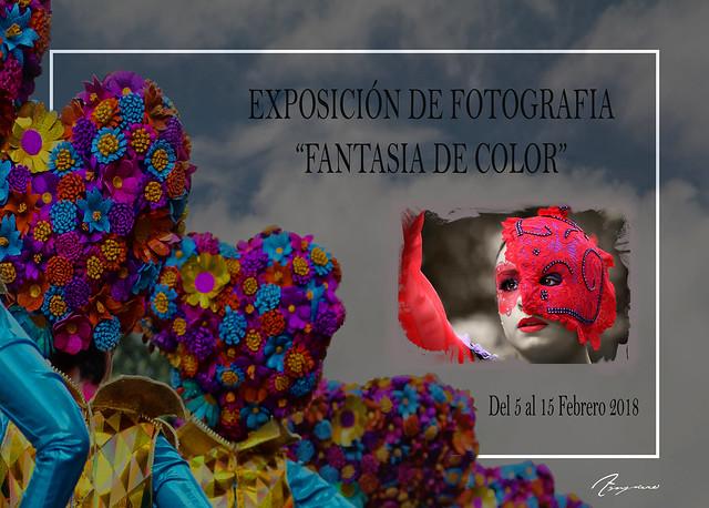 Fantasía de color - Amparo García Iglesias