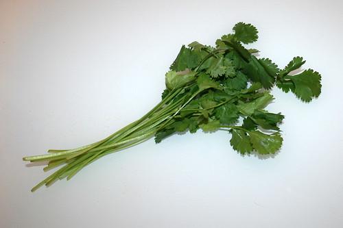 10 - Zutat Koriander / Ingredient cilantro