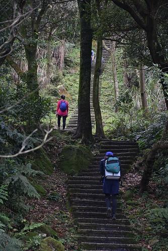 大尖山登山步道