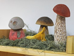 The models of mushrooms bade from the wood by Dalibor Novotny