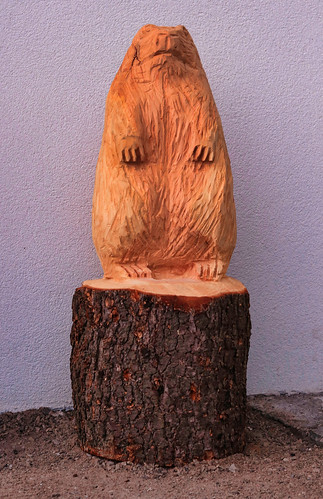 Beaver of Gries