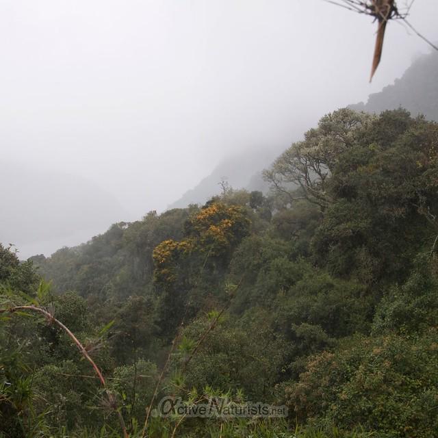 view 0003 balneario Tambo, Papallacta, Ecuador