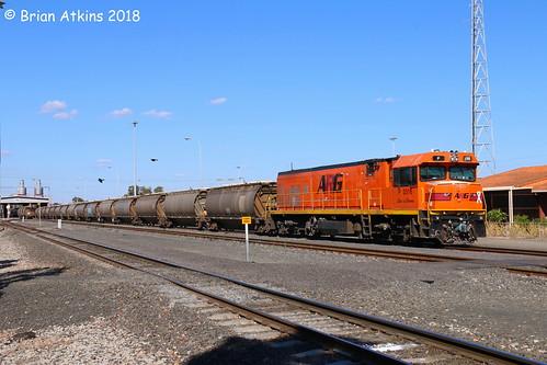 IMG_8693 P2516 Picton Yard 5881 8.2.18_1