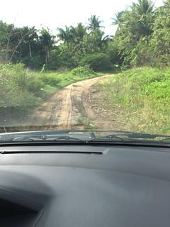 130 - Feldweg nahe Montellano