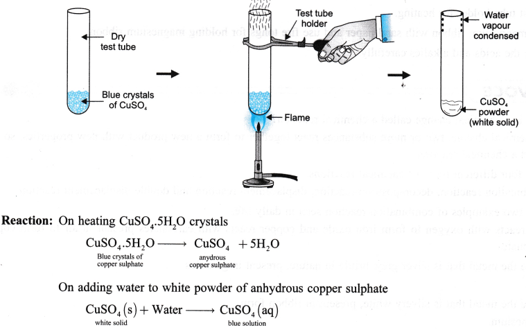 ncert-class-9-science-lab-manual-types-of-reactions-and-changes-12